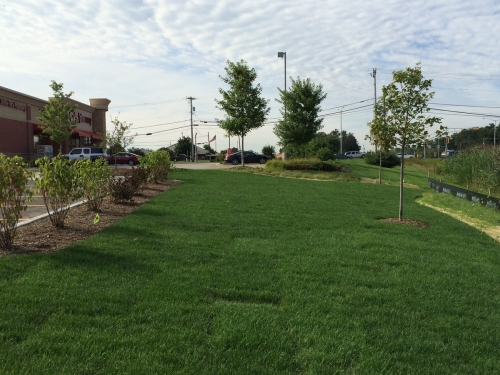Commercial Lawn Maintenance Pewaukee Wisconsin
